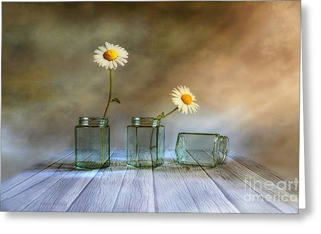 Daisy Digital Greeting Cards - Only two Greeting Card by Veikko Suikkanen
