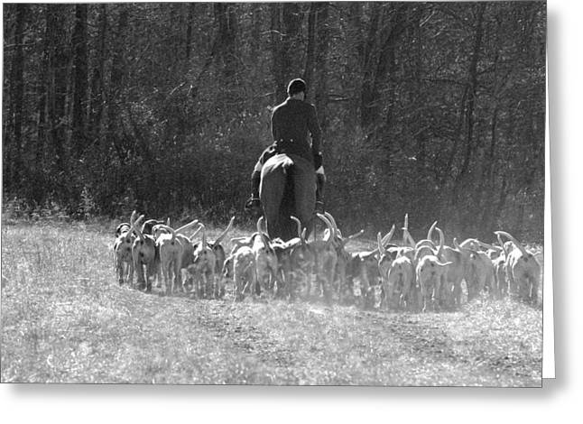 Foxhunting Greeting Cards - Onto The Next Covert Greeting Card by Nancy Milburn Kleck