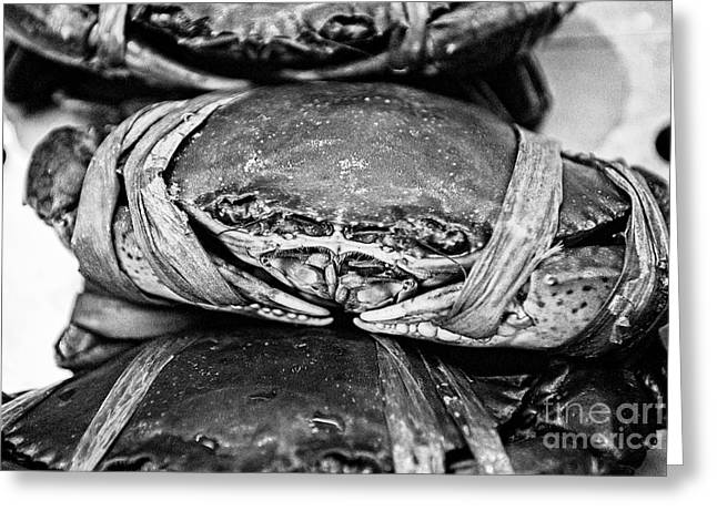 Creature Eating Greeting Cards - Ooh Crab - Black and White Version Greeting Card by Dean Harte