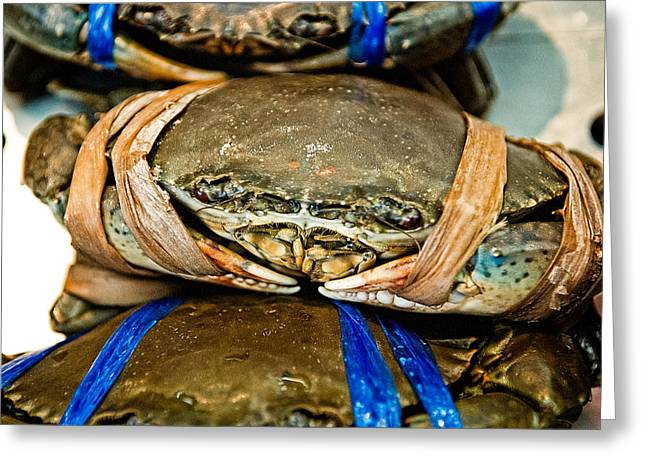Blue Crabs Greeting Cards - Ooh Crab Greeting Card by Dean Harte