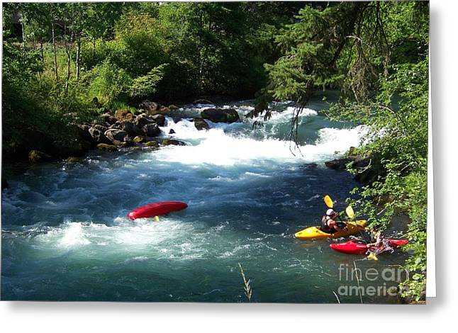 White Salmon River Greeting Cards - Oops Greeting Card by Charles Robinson
