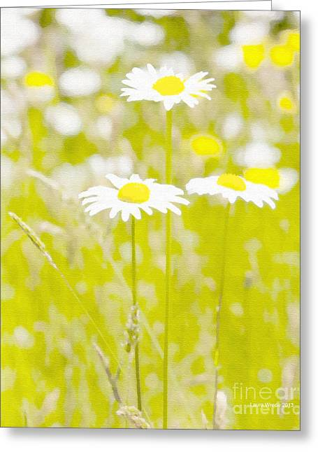 Best Flower Images Greeting Cards - Oopsy Daisy Greeting Card by Artist and Photographer Laura Wrede