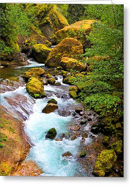 State Parks In Oregon Greeting Cards - Opal River Painted Greeting Card by Athena Mckinzie