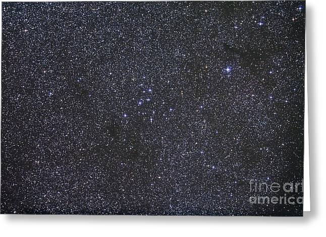Twinkle Greeting Cards - Open Cluster Messier 39 Greeting Card by Alan Dyer