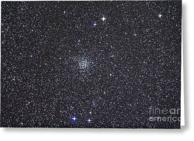 Cassiopeia Constellation Greeting Cards - Open Cluster Ngc 7789 Greeting Card by Alan Dyer