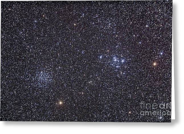 Twinkle Greeting Cards - Open Clusters Messier 47 And Messier 47 Greeting Card by Alan Dyer