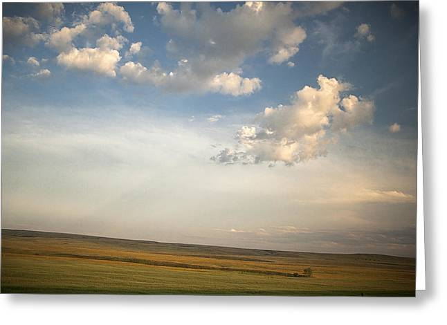 Montana Landscape Art Greeting Cards - Open Skies Greeting Card by Andrew Soundarajan