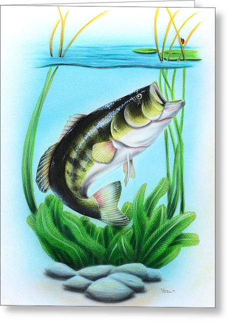 Bass Fish Mixed Media Greeting Cards - Open to Bugs Greeting Card by Sam Johnson