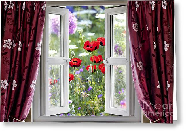 Grow Inside Greeting Cards - Open window view onto wild flower garden Greeting Card by Simon Bratt Photography LRPS
