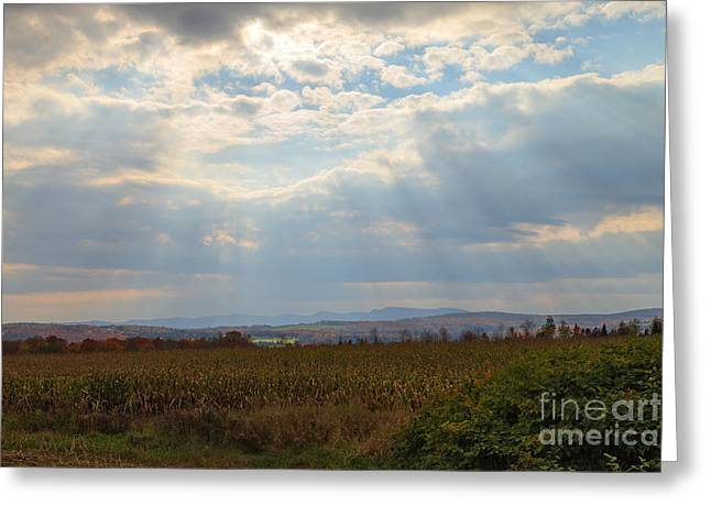 Sutton Farm Greeting Cards - Opened Sky Greeting Card by Charles Kozierok
