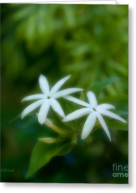 Euphoria Greeting Cards - Optimistic Jasmine Friend to the Soul Greeting Card by Michelle Wiarda
