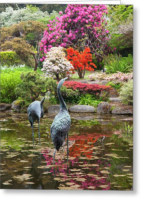 Or, Shore Acres State Park, Shore Acres Greeting Card by Jamie and Judy Wild