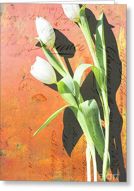 Azure Mixed Media Greeting Cards - Orange Abstract Tulips Greeting Card by Anahi DeCanio