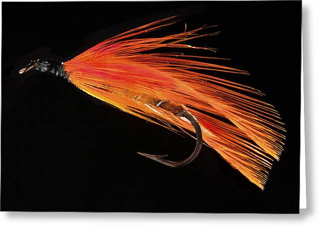 Metal Fish Art Photography Greeting Cards - Orange  Greeting Card by Alex Saunders