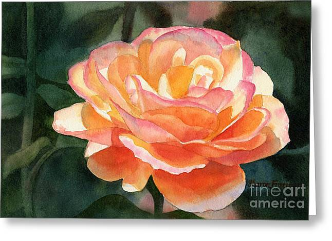 Close Up Paintings Greeting Cards - Orange and Gold Rose Greeting Card by Sharon Freeman