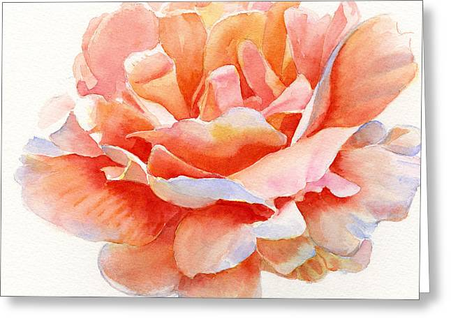 Close Up Paintings Greeting Cards - Orange and Gold Rose Square Design Greeting Card by Sharon Freeman