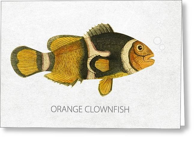 Orange Clownfish Greeting Card by Aged Pixel