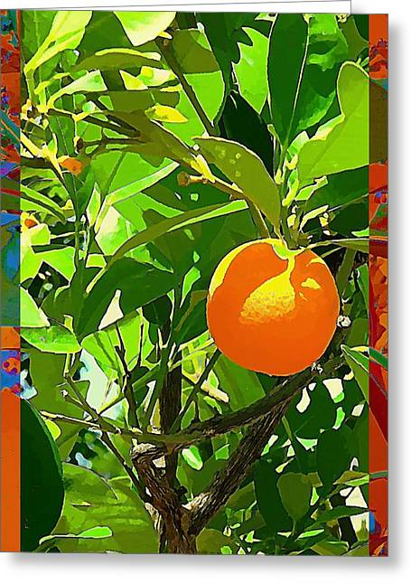 Fruit Tree Art Greeting Cards - Orange Crush Greeting Card by Mindy Newman