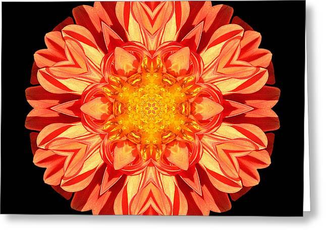 David J Bookbinder Greeting Cards - Orange Dahlia Flower Mandala Greeting Card by David J Bookbinder