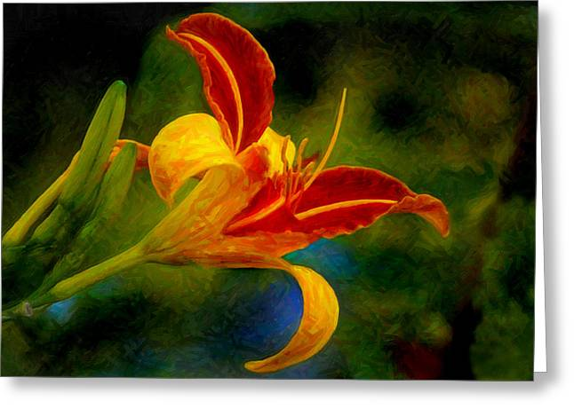 Day Lilly Digital Greeting Cards - Orange Day Lilly Greeting Card by Posey Clements