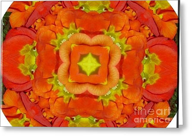 Hall Ceramics Greeting Cards - Orange Flowers Greeting Card by Gabriele Mueller