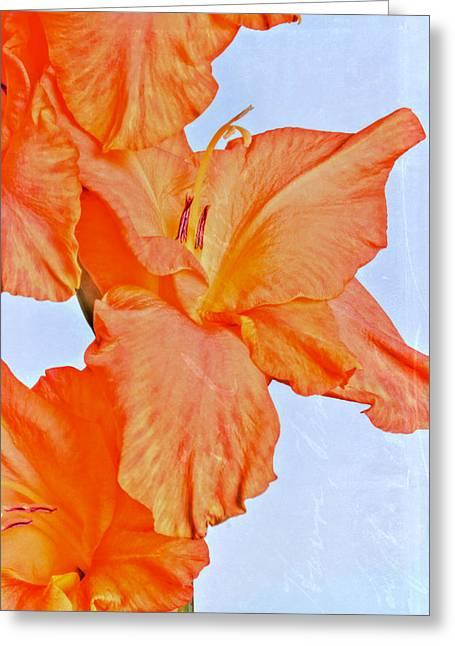 Family Love Greeting Cards - Orange Glad Greeting Card by Heidi Smith