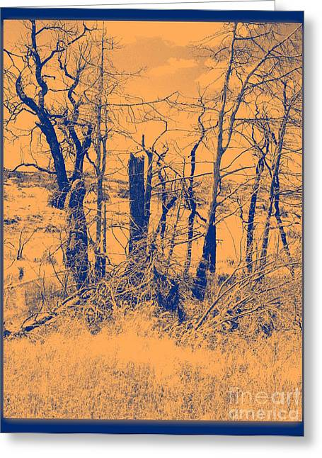 Duo Tone Greeting Cards - Orange Glow Greeting Card by Mickey Harkins