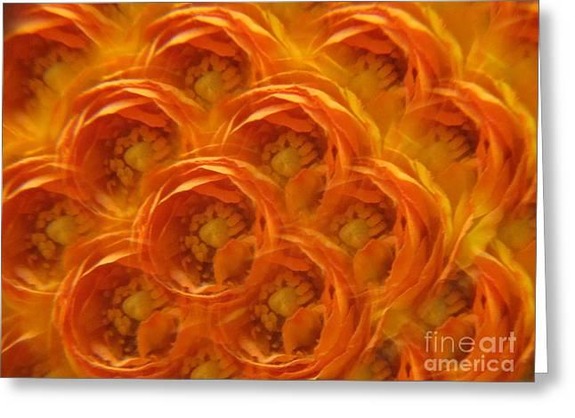 Red Photographs Drawings Greeting Cards - Orange Joy 2 - Abstract Greeting Card by Tara  Shalton