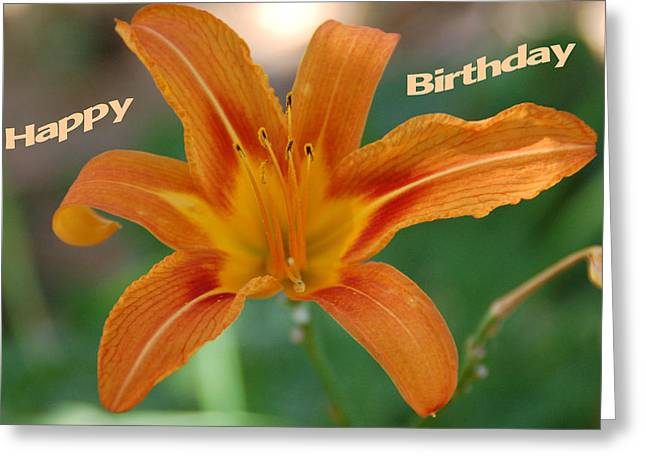 Orange Lily Birthday 1 Greeting Card by Aimee L Maher Photography and Art Visit ALMGallerydotcom