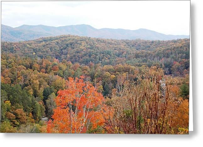 Orange Mountain Range Greeting Card by Regina McLeroy