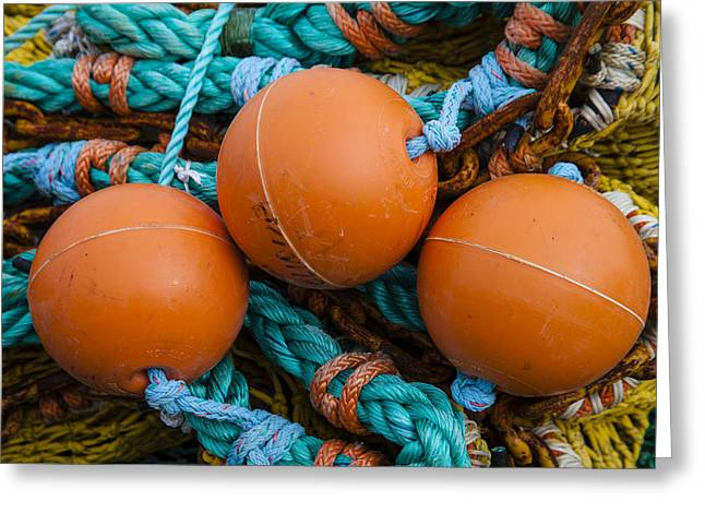 Newport Greeting Cards - Orange Net Floats Greeting Card by Carol Leigh