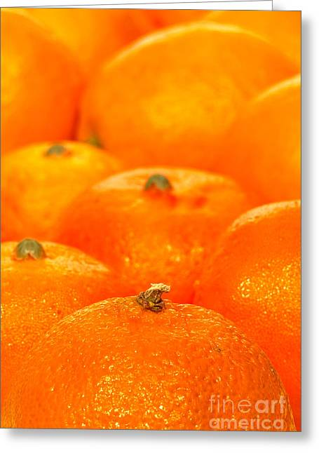 Navel Greeting Cards - Orange Oranges Greeting Card by Olivier Le Queinec