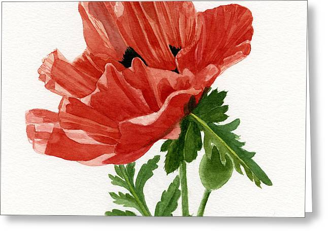 Background Paintings Greeting Cards - Orange Poppy Blossom Square Design Greeting Card by Sharon Freeman