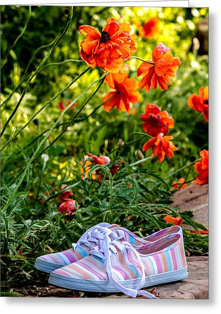 Gardening Tools Greeting Cards - Orange Poppy Dreams Greeting Card by Teri Virbickis