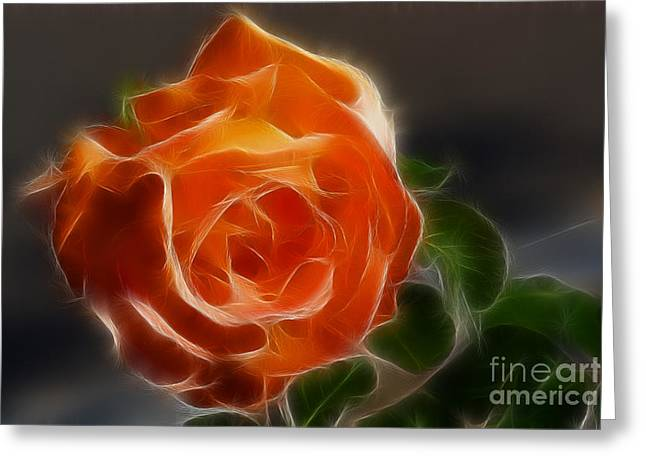 Orange Rose 6220-fractal Greeting Card by Gary Gingrich Galleries