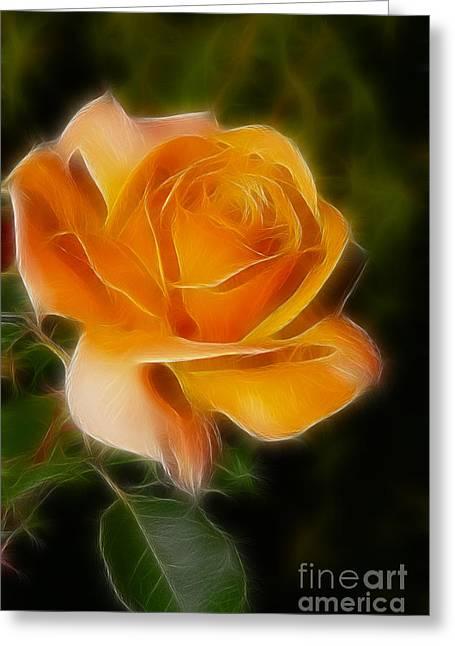 Orange Rose 6292-fractal Greeting Card by Gary Gingrich Galleries
