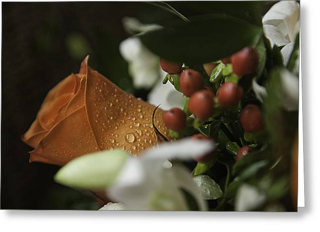 Apricot Greeting Cards - Orange Rose Greeting Card by Lesley Rigg