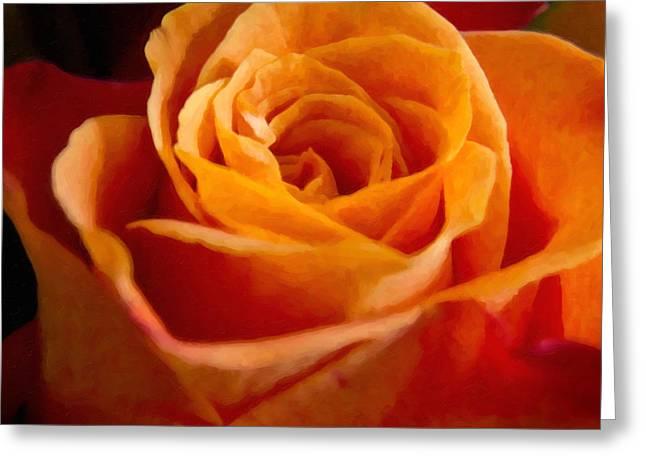 Single Rose Greeting Cards - Orange Rose Greeting Card by Lutz Baar