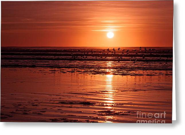 Sunset Prints Photographs Greeting Cards - Orange Sunset Greeting Card by Lucid Mood