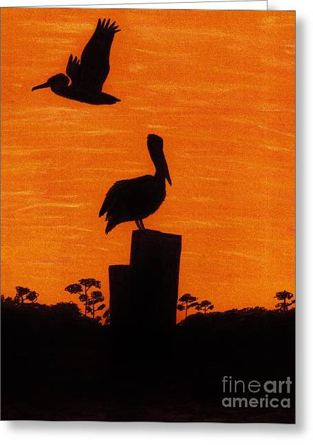 Surf Art Drawings Greeting Cards - Orange - Sunset - Pelicans Greeting Card by D Hackett