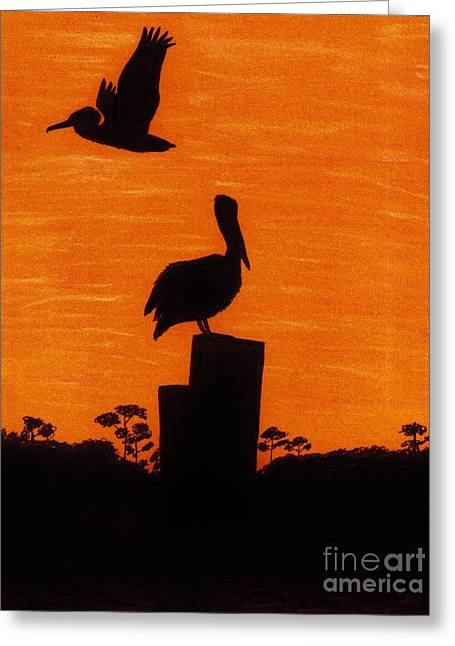 Surf Silhouette Drawings Greeting Cards - Orange - Sunset - Pelicans Greeting Card by D Hackett