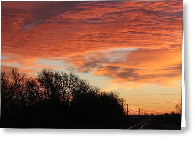 Orange Tracks Greeting Card by Cary Amos