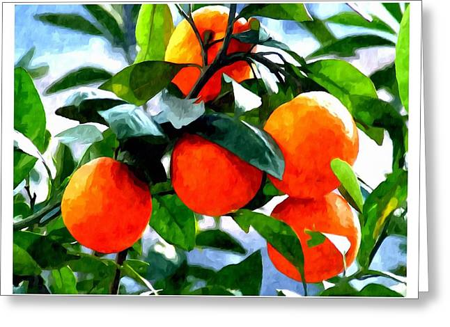Orange Tree In Springtime  Greeting Card by Lanjee Chee