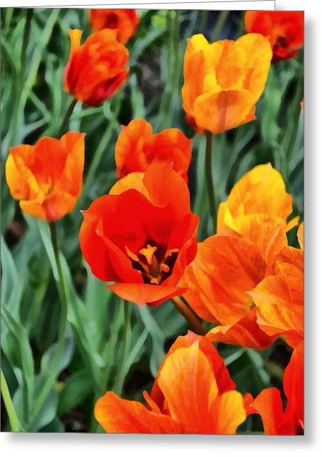 Photograph Greeting Card featuring the photograph Orange Tulip Splendor by Michelle Calkins