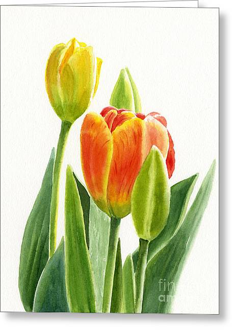 Botanical Garden Greeting Cards - Orange Tulip with Buds Greeting Card by Sharon Freeman