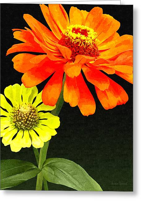 Gardener Greeting Cards - Orange Zinnia and Yellow Zinnia Greeting Card by Susan Savad