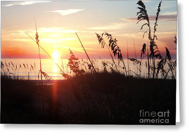 St. Lucie County Greeting Cards - Orb of Day Greeting Card by Megan Dirsa-DuBois