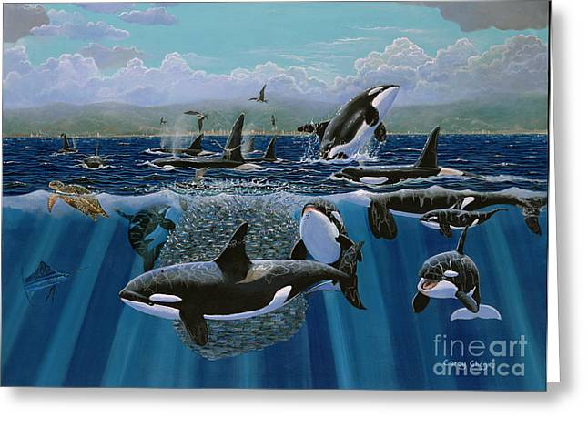 Monterey Greeting Cards - Orca Play Re009 Greeting Card by Carey Chen