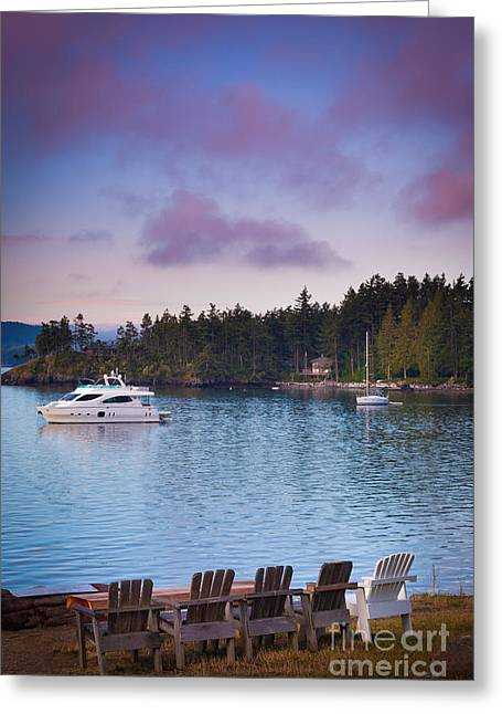 Stillness Greeting Cards - Orcas Viewpoint Greeting Card by Inge Johnsson