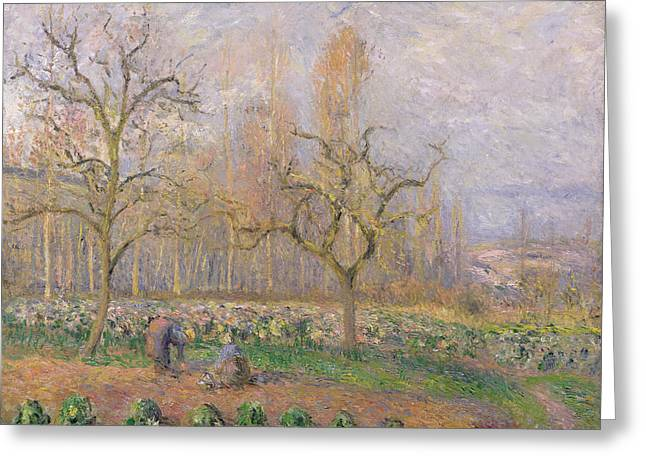 Orchard at Pontoise Greeting Card by Camille Pissarro